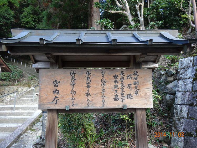 20141103yoshino 012